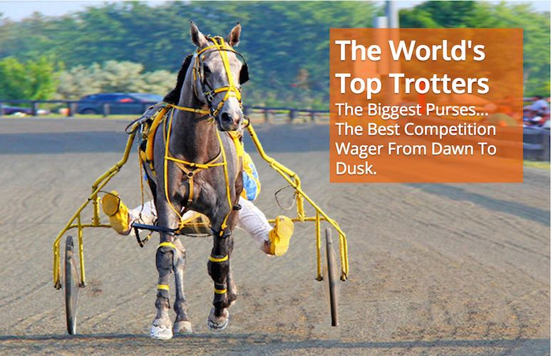Day At The Track - Online Wagering Made Easy